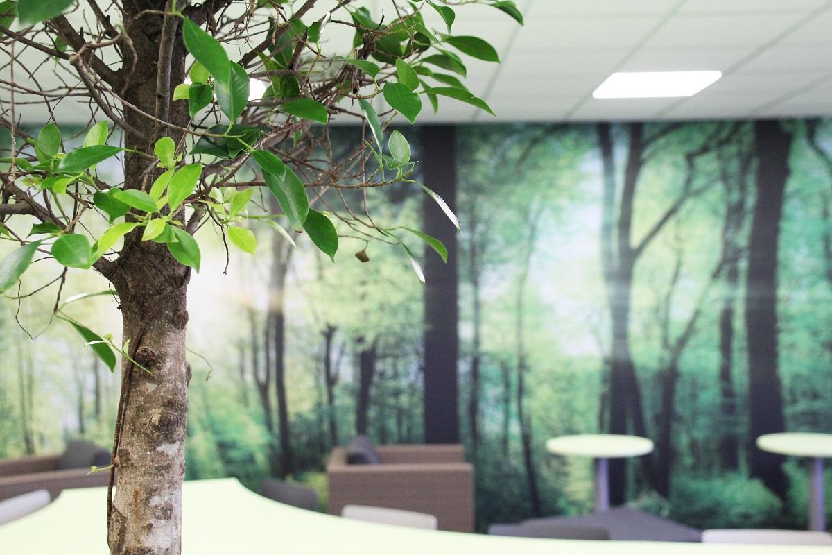 Pekárna v Rosicích u Brna disponuje krásnou relaxační místnosti, kde si mohou zaměstnanci o přestávkách odpočinout, připravit si oběd, nebo využít volné wi-fi.